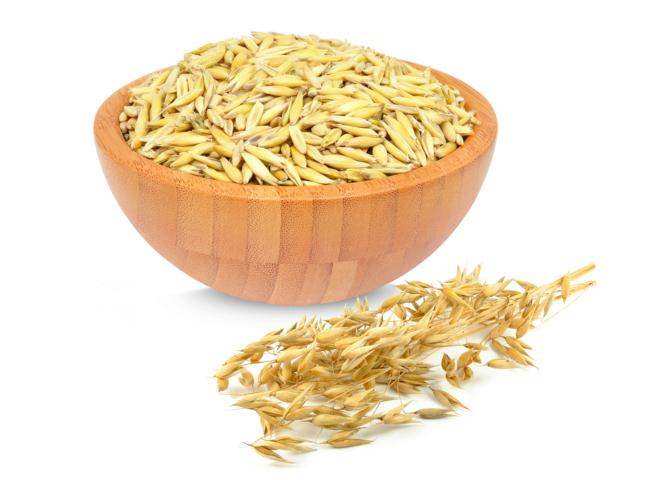 Hund allergisch auf Getreide