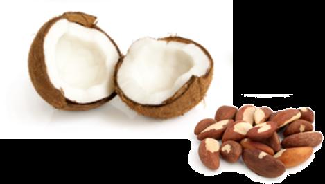 Kokosflocken und Paranüsse bei BARF ohne Innereien