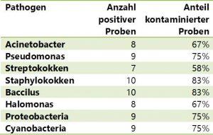 Bakterien im Fertigfutter