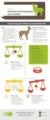 BARF-Blog_Fettsäuren_Infografik